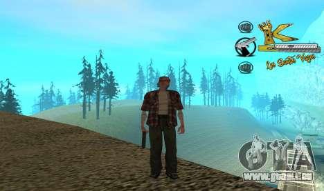 C-HUD Vagos für GTA San Andreas