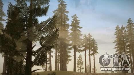 Simple ENB Series for Low PC für GTA San Andreas