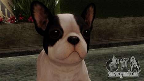 French Bulldog pour GTA San Andreas troisième écran