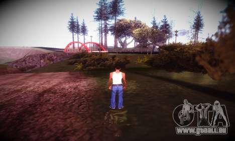 Ebin 7 ENB pour GTA San Andreas cinquième écran