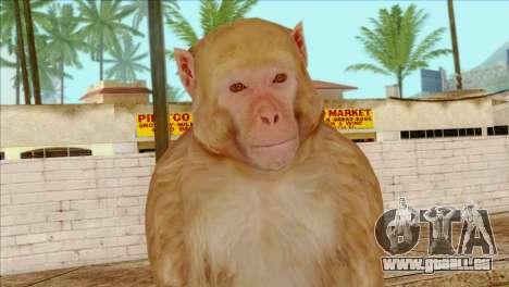 Monkey Skin from GTA 5 v2 pour GTA San Andreas troisième écran