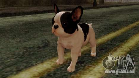 French Bulldog für GTA San Andreas