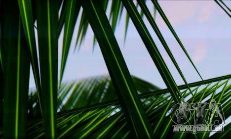 Smooth Realistic Graphics ENB 3.0 pour GTA San Andreas quatrième écran