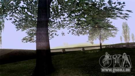 La texture des arbres de MGR pour GTA San Andreas cinquième écran