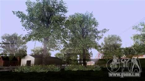 La texture des arbres de MGR pour GTA San Andreas