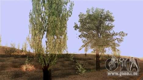 La texture des arbres de MGR pour GTA San Andreas troisième écran