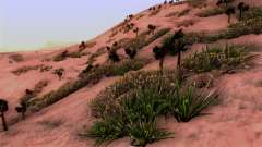 Wahre Beschaffenheit der vegetation