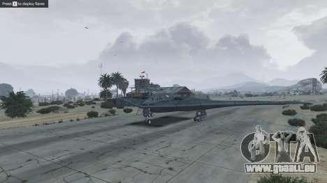 GTA 5 B-2A Spirit Stealth Bomber neuvième capture d'écran