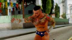 CM Punk 2