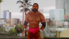 WWE Damien Sandow 2