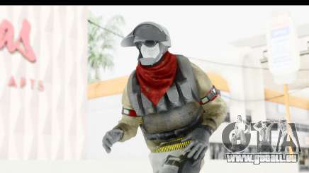 The Division Last Man Battalion - Support für GTA San Andreas