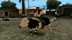 À cheval sur la vache