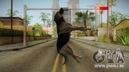 Silent Hill Downpour - DOG SH DP für GTA San Andreas