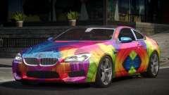 BMW M6 F13 GS PJ10