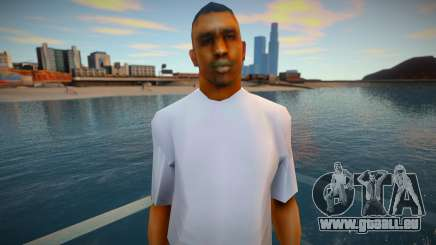 Grove Street New Gang v3 pour GTA San Andreas